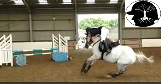 Horse refusing a show jump & horse rider nearly falling off.