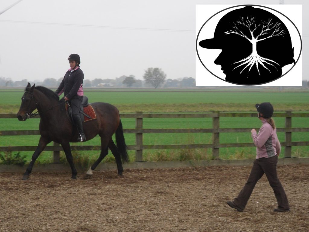 On the horse Confidence coaching: horse & rider being taught